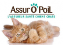 Assuropoil.fr