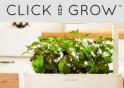 Clickandgrow.com