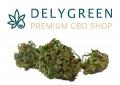 Delygreen.com