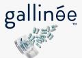 Gallinee.com