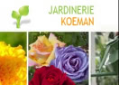jardineriekoeman.fr