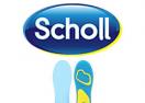 scholl.fr